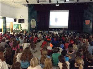 Author Assembly